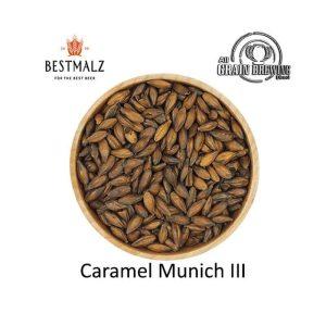 BestMalz Caramel Munich III Malt