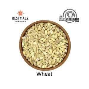 BestMalz Wheat Malt